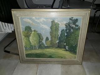 Obraz - krajinka