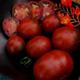 Rajče Nyagous - semena